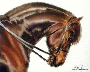 bay-horse-1
